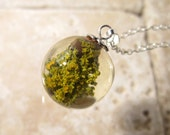 Lichen (Xanthoria parienta) Sphere Necklace, nature jewellery, Plant Jewelry, rustic, mycology, fungi, Silver plated chain