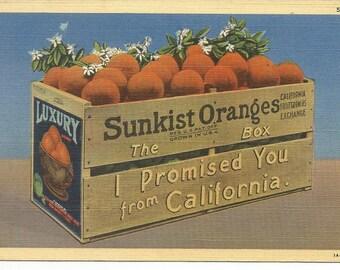Vintage Greetings from California Sunkist Oranges Postcard Fruit Crate