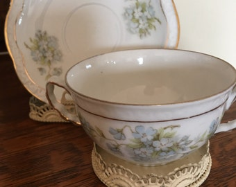 VINTAGE  FINE CHINA Bavaria Cup / Saucer- Danity Blue and White Flowers