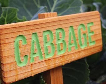 CABBAGE Garden Sign, Painted & Oil Sealed Cedar Wood: Hand Routed, Garden Marker, Plant Marker, Custom Garden Sign, Personalized Marker