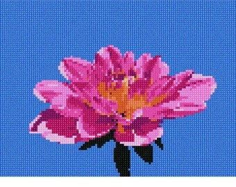 Needlepoint Kit or Canvas: Dahlia On Sky