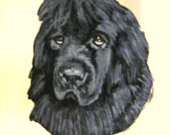 Newfoundland, Pet Treat Jar, Custom Canister, Dog Snack Holder, Painted Glass Jar, Personalized Pet, Biscuit Holder, Pet Storage Container