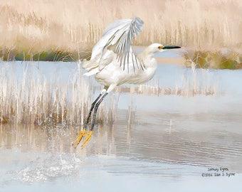 wildlife photography, snowy egret print, wildlife art print, bird art print, bird wall art, wildlife décor, nature art print, home décor art