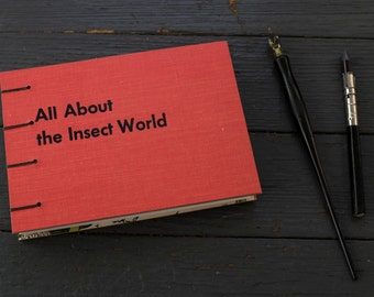 Handmade Repurposed Bug Insect Book - Journal or Sketchbook