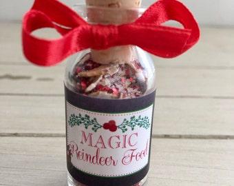 Reindeer Food, Reindeer Dust, Christmas Party Favor, Christmas Eve- Christmas Party Favor- Test Tube Christmas Treats- Christmas Gift