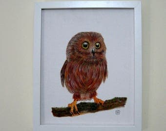 Owl on Branch - original painting of baby owl on branch in white wooden frame