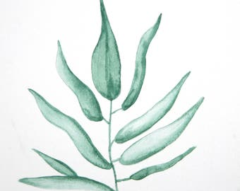 Original 5 x 5 inch watercolor painting of a eucalyptus branch by Meredith O'Neal
