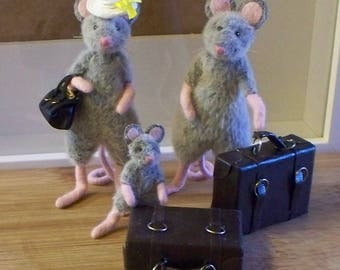 Family of silver grey fur mice.