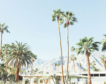 Palm Springs photography, Palm trees, Palm Springs Photography, Desert Landscape, California Architecture,Retro, Vintage decor, mid century