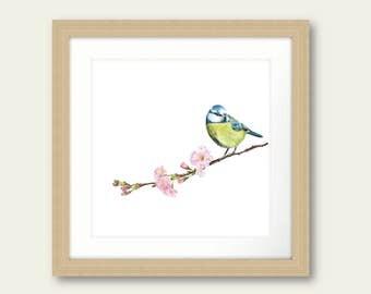 Sitting Pretty Blue Tit British Bird Print Artwork Picture