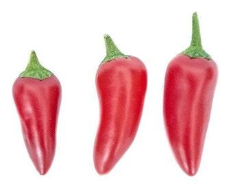Fresno  Chili Pepper,  10+ seeds Heirloom/OP