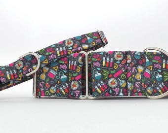 All About Chemistry Dog Collar (Martingale, Buckle or Tag)