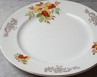 China Dinner Plate Vintage Plate Royal Harvey