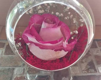 Standing glass globe with preserved rose