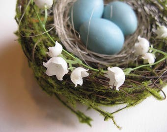 Natural bird nest with eggs, Nest with eggs, Bird nest, Robin eggs