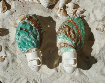Natural Shell Night Light, Abalone Brown and Teal Night light, shell night light, Coastal Decor