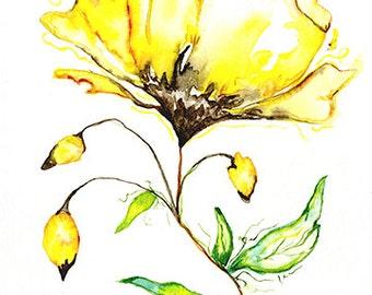 Yellow Flower 5x7 Giclee Print of Original Watercolor