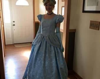 Cinderella Adult Gown