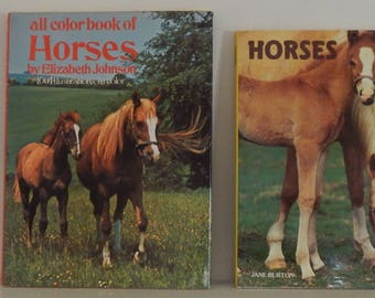 Cute and Colorful Pair of 1970's Horse Books!