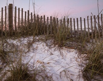 Digital Backdrop White Sand Beach