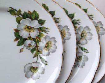 Four Delphine Bone China Side Plates Wild Rose Pattern  Vintage bone china.
