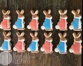 12 Bunny Rabbit Sugar Cookies, Peter Rabbit, Flopsy, Mopsy, Cottontail, Bunny, Rabbit, pink, blue, Flopsy Bunnies, baby shower, cookies