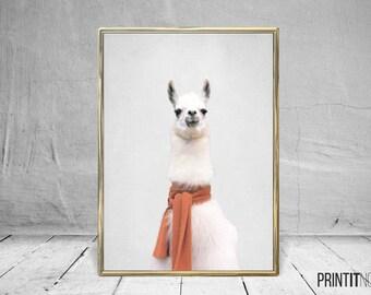 Lama Print, Nursery Animal Decor Wall Art, Large Printable Poster, Digital Download, Modern Minimalist Decor, Animal Poster