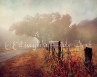 Fog Photo, autumn decor, Landscape photo, nature photo, nature decor, Country Road photo, home decor, rural art, red, orange, fall leaves