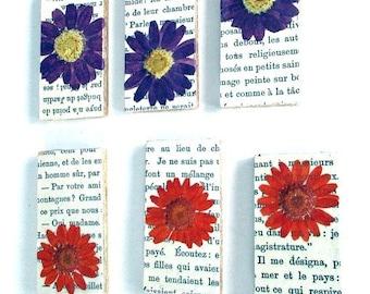 Vintage Dried Flowers Adhered to Wood Block, Decoupaged Vintage Paris Book, Set of 12