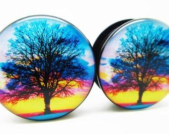 Sunset Tree of Life Ear Plugs - Acrylic Screw-On - 10 Sizes