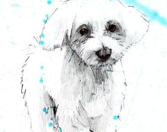Portrait of your pet