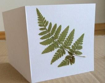 Pressed Plants Card, Pressed Fern Card, Greeting Card