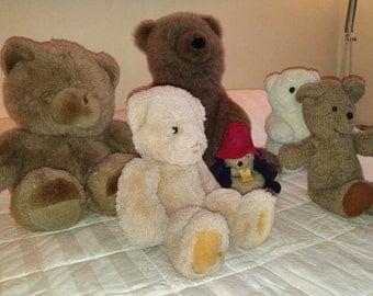 Stuffed Bear Collection