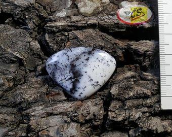 CS0198 - Dendritic Opal Cabochon