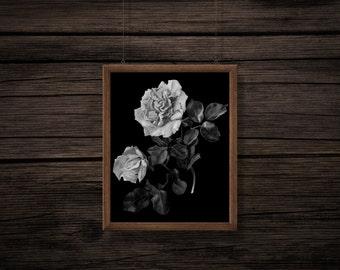 Vintage Rose Print - Rose Digital Print - Botanical Printable - Antique Print - Wall Decor - Black White - Digital Download - JPEG - PNG