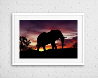 Elephant in Dawn Africa  Art Photo with Frame