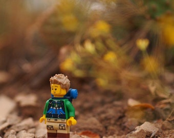Items Similar To Lego Photography Letter N 4x6 Instant