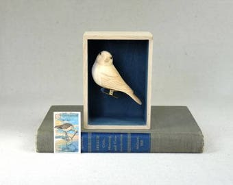 Vintage Carved Finch in Shadow Box, woodworking