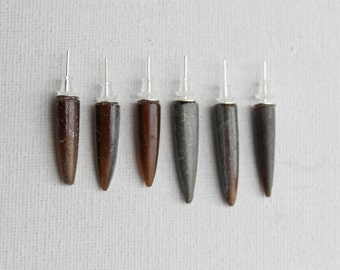 6 Fossil Belemnite Spike Stud Earrings | Curiosities and Oddities | Vulture Culture
