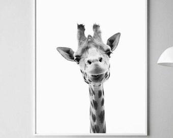 Giraffe Print Art, Art Prints, Animal Prints, Giraffe Artwork, Giraffe Art, Giraffe Print, Giraffe Art Print, Giraffe Nursery Art, Print