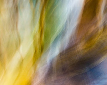Wiggle — Color photo. Modern, abstract and colorful wall art and decoration. Hi-Res Digital Download.