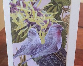 BIRD: Drunken Botanist