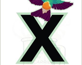 X is for Xantus : Animal Alphabet