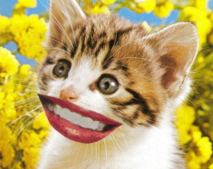 Smiling Cat Art, Cute Kitten Artwork, VIntage Kitsch Postcard