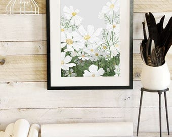 Cosmos In Bloom- Botanic Collection - Beautifully textured cotton canvas art print. Order as a 5x7 8x10 11x14 or 16x20 size.