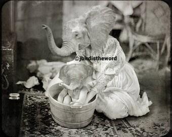 Baby Elephant, Elephant Artwork, Elephant Art, Elephant Print, Elephant Photo, Elephant Decor, Baby Shower Gift, Animal Art, Nursery Art