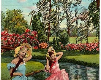 Vintage Florida Postcard - Gone With the Wind at Cypress Gardens (Unused)