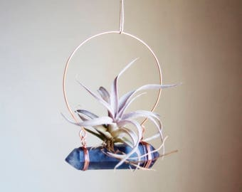 Hanging Air Planter on Crystal, Boho Decor, Blue Fluorite Airplant Swing Display, Wire Wrapped, Chiapensis, Gift For Gardener, Mom
