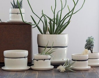Large Porcelain Planters with Black Linen