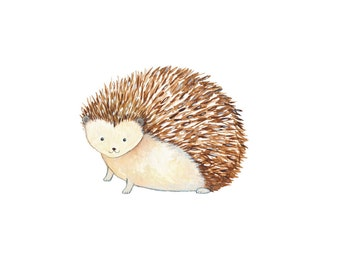 Baby Hedgehog Print - Woodland Nursery Decor